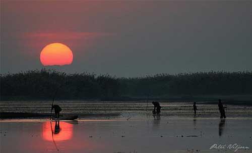pantano Bangweulu, Zambia
