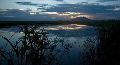 pantano  de Candaba, Filipinas