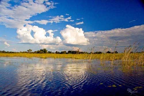 pantano Okavango, Bbotswana
