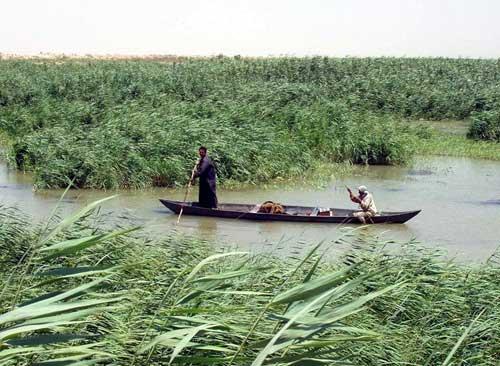pantano del Tigris y el Éufrates