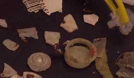 piezas de plástico en el estómago de una tortuga marina