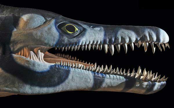pliosaurio de Dorset, recreación artística
