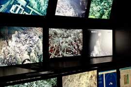 monitores con imágenes del volcán submarino Axial