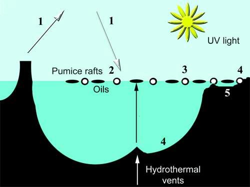 procesos que pudieron producir la vida en balsas de piedra pómez