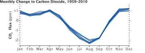 cambios mensuales en el CO2, 1959-2010