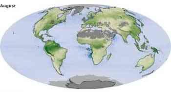 cambios mensuales del CO2, agosto