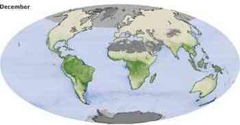 cambios mensuales del CO2, diciembre