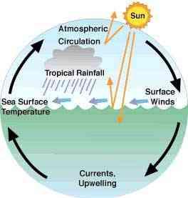 circulación del calor entre los océanos y la atmósfera