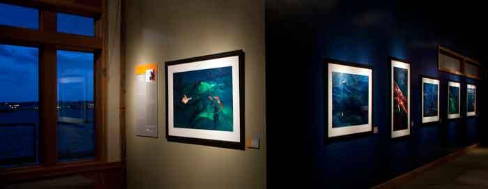 exposición de Daniel Beltrá del derrame de petróleo en Long Beach