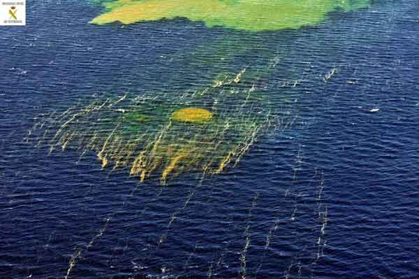 manchas en el Mar de las Calmas, El Hierro 02-11-2011