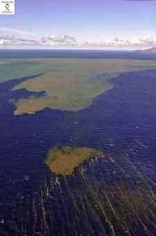 mancha en el Mar de las Calmas, 02-11-2011
