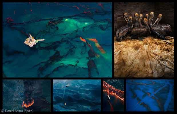 photojournalism awards sequence de 6 fotos por Daniel Beltrá