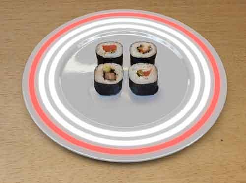 plato Fukushima con un led rojo, pescado radiactivo