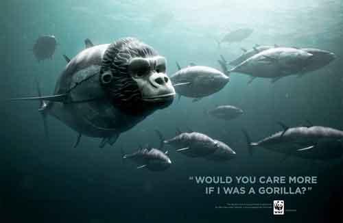 campaña WWF en favor del atún rojo, gorila