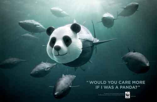 campaña de WWF en favor del atún rojo, panda