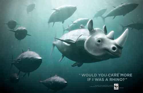campaña WWF en favor del atún rojo, rinoceronte