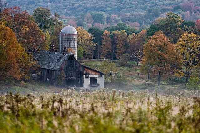 granja abandonada y bosque