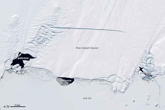 polinias en el glaciar Pine Island, Antártida