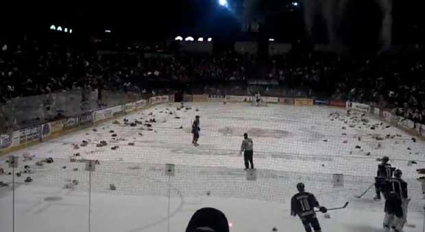 lluvia de ositos de peluche sobre pista de hockey sobre hielo