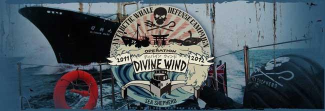 operación Viento Divino de Sea Shepherd