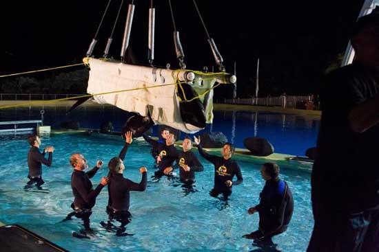la orca Morgan es bajada con una grua en Loro Parque
