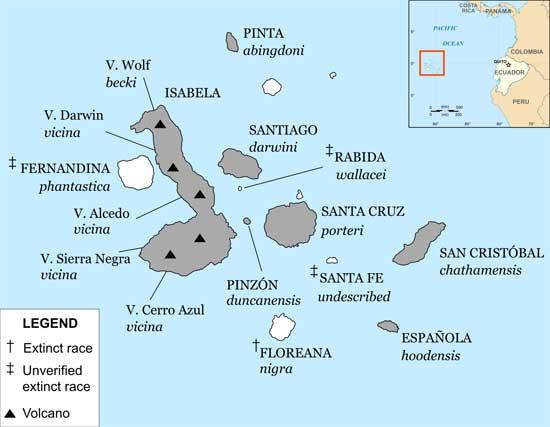 distribución de tortugas en las islas Galápagos