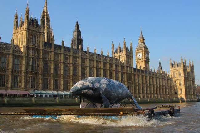 réplica de ballena en el Támesis frente al Parlamento - wwf