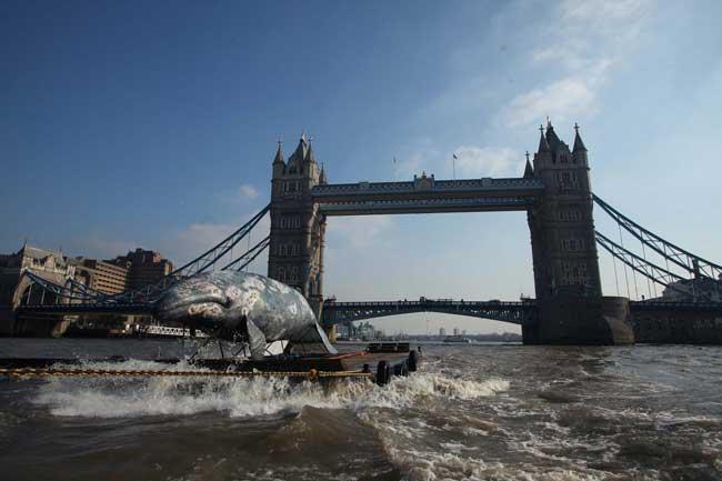 réplica de ballena en el Támesis se acerca al Puente de Londres - wwf