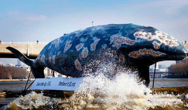 réplica de ballena en el tämesis de WWF