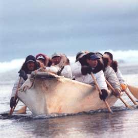 cazadores de ballenas inuit