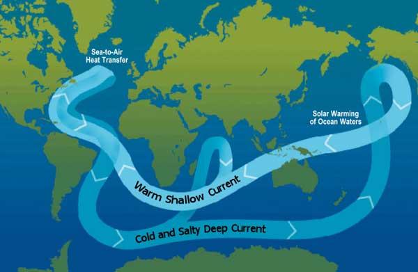 circulación termoalina oceánica