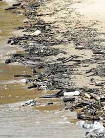 desechos humanos acumulados en una playa