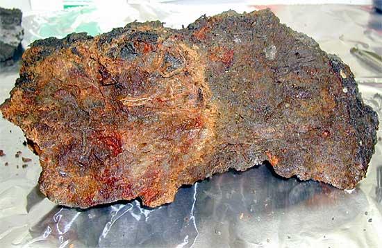 microbios en una roca volcánica submarina