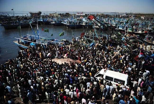 multitud cerca del tiburón ballena en el puerto de Karachi