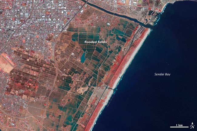 Bahía de Sendai después del tsunami