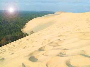 gran duna de Pyla, Francia invadiendo el pinar