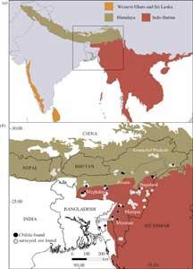 mapa Noreste de la India