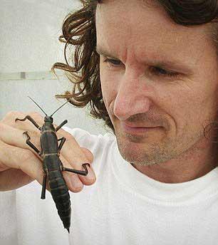 Nick Carlile con dos Dryococelus australis