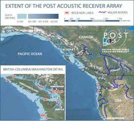 Sistema POST, mapa de seguimiento de animales marinos