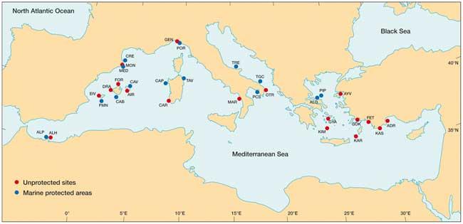 zonas incluidas en el estudio sobre el Mediterráneo