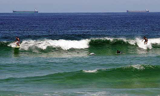 ataque de tiburón en la playa de Redhead