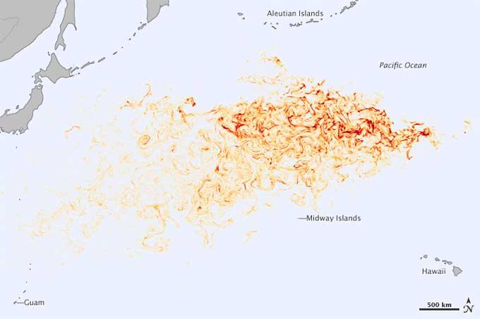 desplazamiento de los escombros del tsunami de Japón por el Pacífico