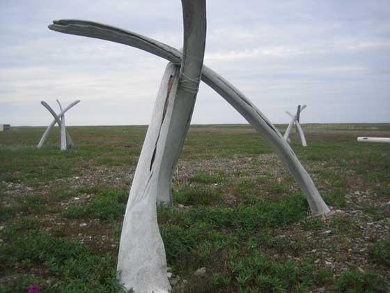 huesos de ballena franca en una antigua ceremonia de Alaska