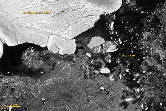 icebergs despendidos en la Antártida por el tsunami