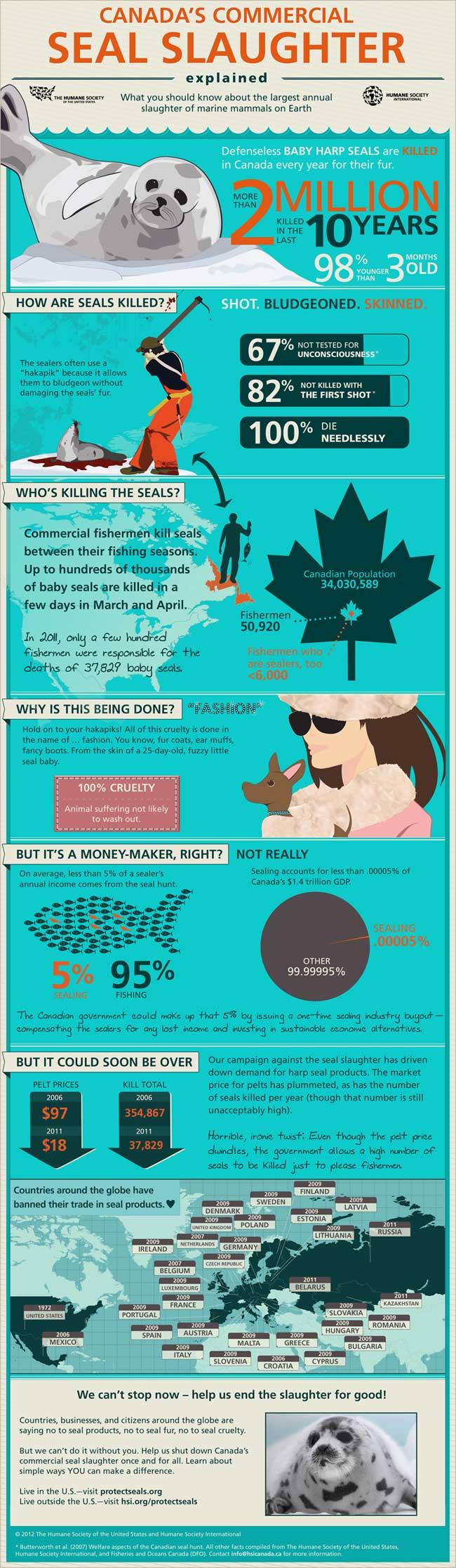 infografía matanza de focas Canadá