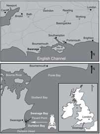 mapa del sitio encontrado cráneo cocodrilo Jurásico