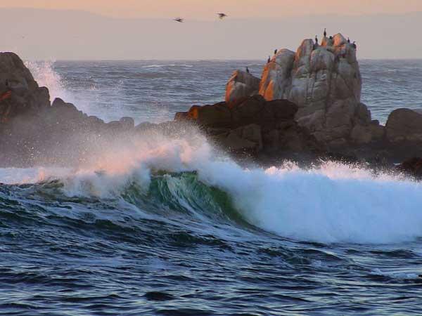 rompiente de olas