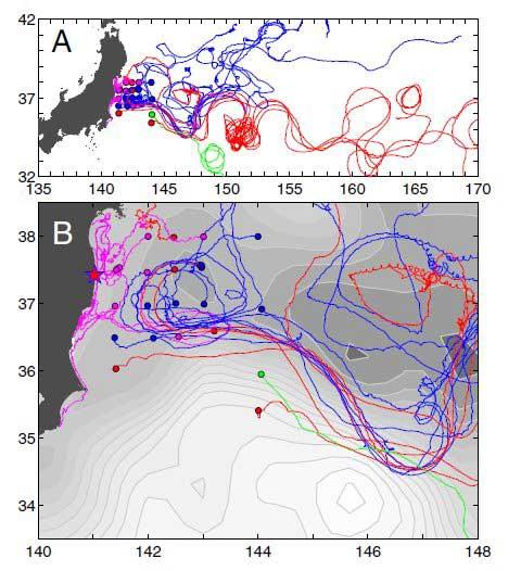 seguimiento de la radiació de Fukushima