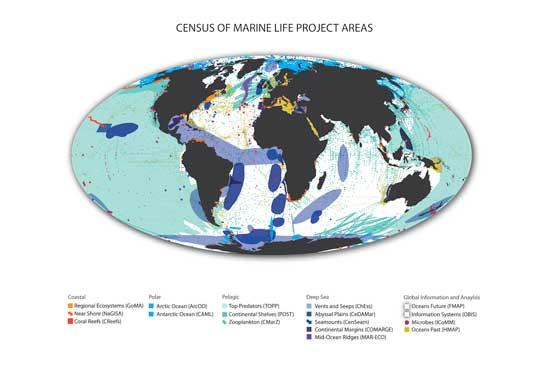 censo de la vida marina, áreas de estudio