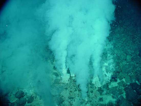 fuentes hidrotermales de fondo del mar